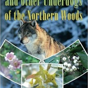 Dogwood Wolf Willow and other underdogs of the Northern Woods