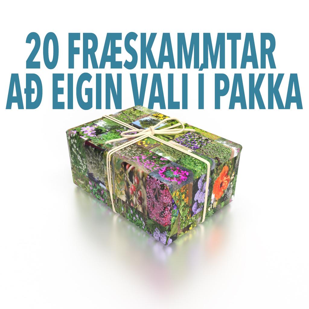 Fræpakki – 20 skammtar