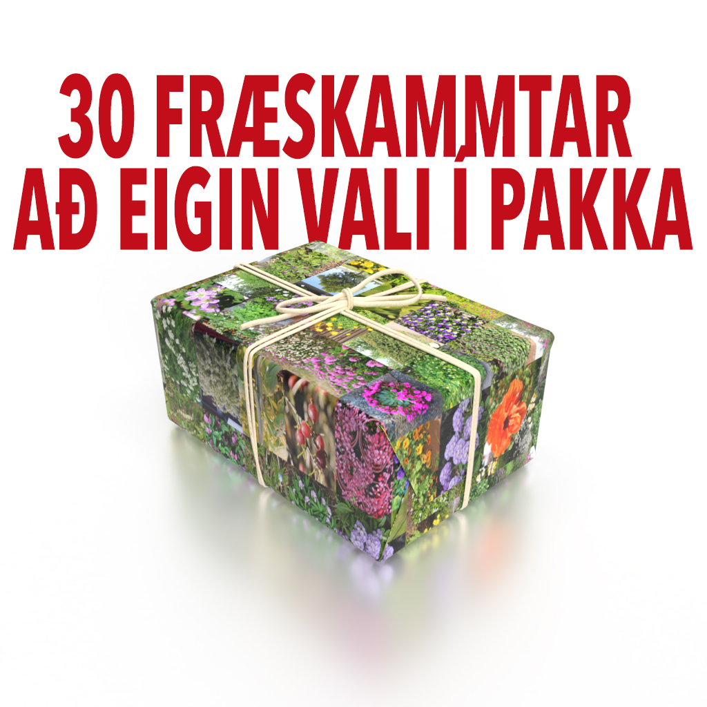 Fræpakki – 30 skammtar