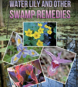 Marsh Marigold, Waterlily and other swamp remedies