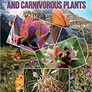 Medicinal Insects and Carnivorous Plants