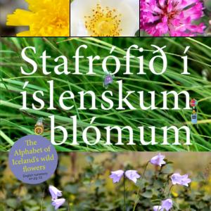 Stafrófið í íslenskum blómum
